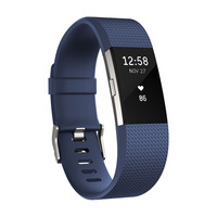 Fitness Watch Charge 2, Blue Silver Large