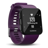 Smartwatch and GPS Forerunner 30 Amethyst