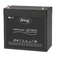 AGM-Power 12 V, 55 Ah